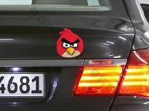Angry birds_30